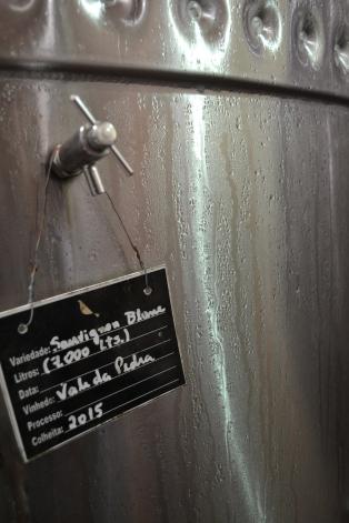 O Sauvignon Blanc Vale da Pedra 2015 sofrendo fermentação alcoólica em tanque de aço inox